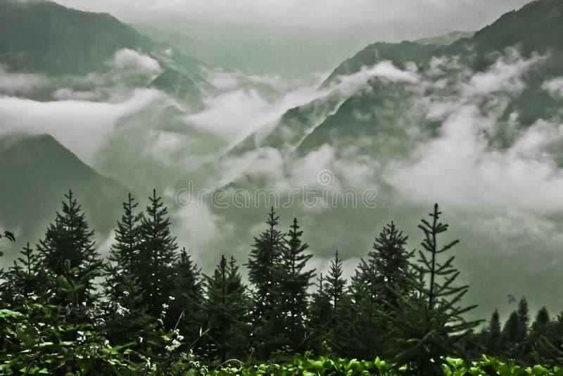 Τα δέντρα έφαγαν και τα misty βουνά κατωτέρω στοκ φωτογραφία