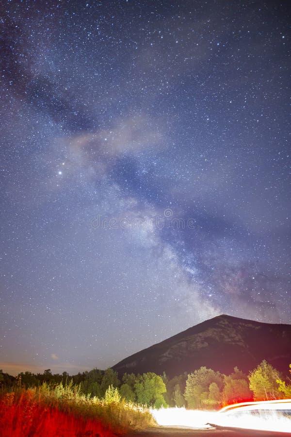 Τα δέντρα πεύκων σκιαγραφούν το γαλακτώδη σκοτεινό ουρανό τρόπων στοκ φωτογραφία