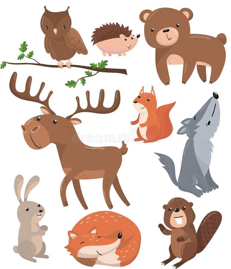 Τα δασικά ζώα θέτουν, δασόβιο χαριτωμένο ζωικό πουλί κουκουβαγιών, αρκούδα, σκαντζόχοιρος, ελάφια, σκίουρος, λύκος, λαγοί, αλεπού διανυσματική απεικόνιση
