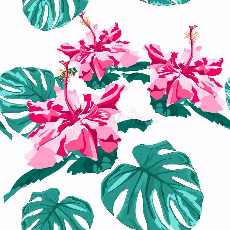 Τα διανυσματικά άνευ ραφής μοντέρνα γραφικά hibiscus σχεδίων πράσινων φώτων λουλούδια με το monstera φοινίκων αφήνουν την τυπωμέν διανυσματική απεικόνιση