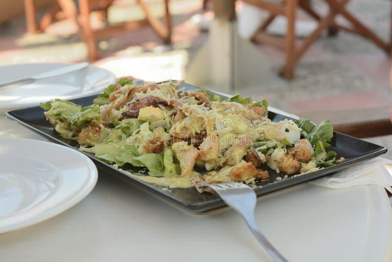 Τα ελληνικά γυροσκόπια πιάτων σε ένα ορθογώνιο πιάτο με τα λαχανικά και τα πράσινα στοκ εικόνες