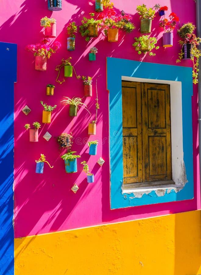 Τα ζωηρόχρωμα δοχεία λουλουδιών στη ζωηρόχρωμη περίληψη χρωμάτισαν τον τοίχο στις οδούς του Φουνκάλ στοκ εικόνα με δικαίωμα ελεύθερης χρήσης