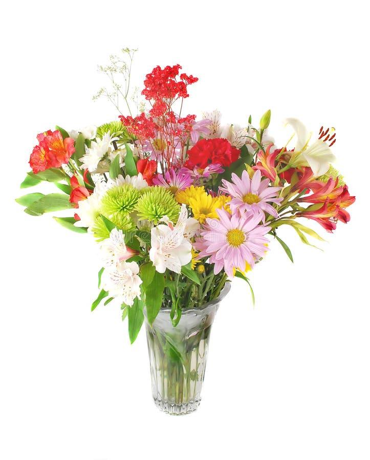 τα ζωηρόχρωμα λουλούδι&alpha στοκ εικόνα