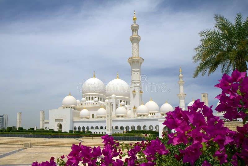 Τα Ηνωμένα Αραβικά Εμιράτα. Αμπού Ντάμπι. Το άσπρο μουσουλμανικό τέμενος. στοκ φωτογραφίες με δικαίωμα ελεύθερης χρήσης
