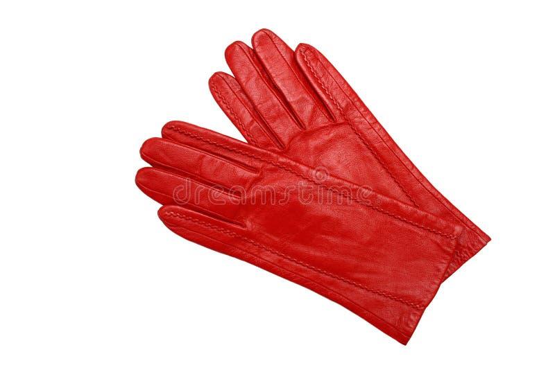 Download τα θηλυκά γάντια απομόνωσ&alph Στοκ Εικόνες - εικόνα από δύο, κλασικός: 22788288