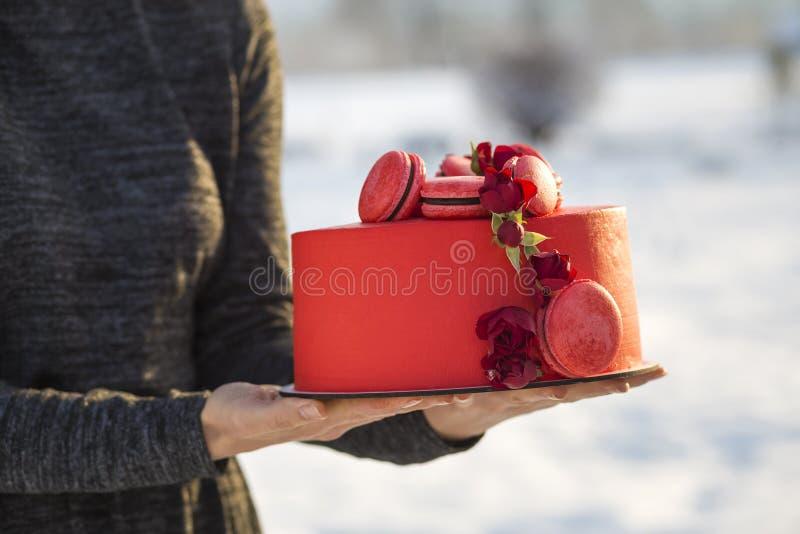 Τα θηλυκά χέρια που κρατούν το πιάτο με το εύγευστο yummy σπιτικό κόκκινο κέικ με τα macarons που διακοσμήθηκαν με τα λουλούδια σ στοκ εικόνες με δικαίωμα ελεύθερης χρήσης