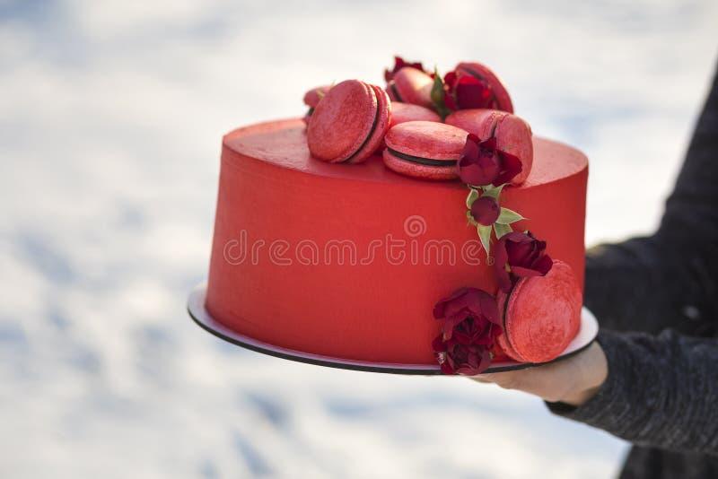 Τα θηλυκά χέρια που κρατούν το πιάτο με το φρέσκο εύγευστο yummy σπιτικό κόκκινο κέικ με τα macarons που διακοσμήθηκαν με τα λουλ στοκ εικόνες
