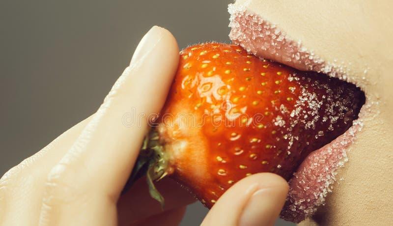 Τα θηλυκά χείλια ζάχαρης δαγκώνουν την κόκκινη φράουλα στοκ εικόνες
