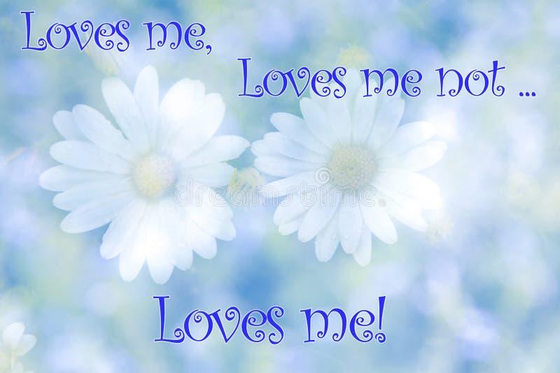 Τα θολωμένα λουλούδια μαργαριτών στο φυσικό υπόβαθρο με το κείμενο με αγαπούν, με αγαπούν όχι στοκ εικόνα