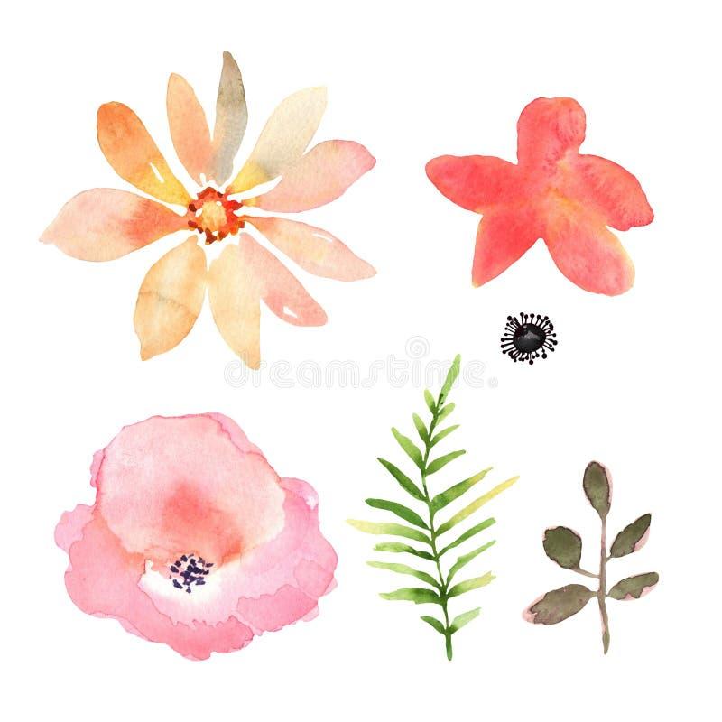 τα διακοσμητικά στοιχεία floral πολλά θέτουν Συλλογή με τα λουλούδια, που σύρουν το watercolor Σχέδιο διανυσματική απεικόνιση