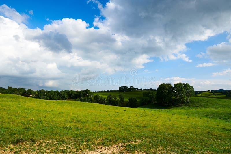 Τα λιβάδια και τα σύννεφα στοκ εικόνες