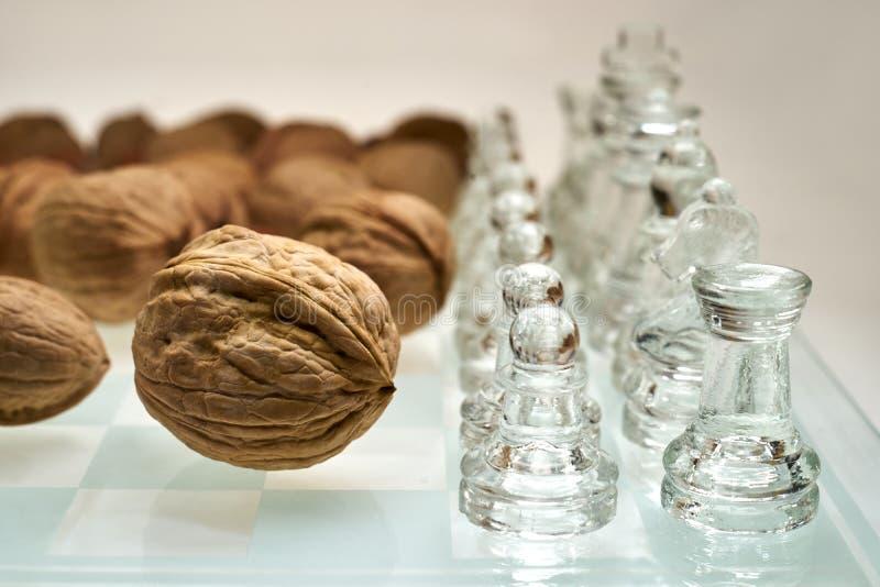 Τα καρύδια βελτιώνουν την απεικόνιση αποδοτικότητας εγκεφάλου - σκάκι, σκακιέρα με τα καρύδια στοκ εικόνες