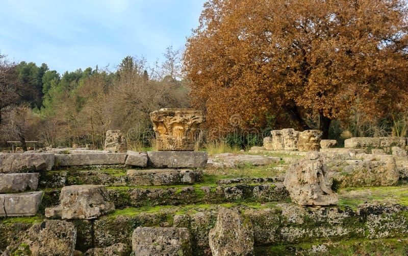 Τα κεφάλαια των στυλοβατών από το ναό Zeus στην Ολυμπία Ελλάδα κάθονται στο βρύο κάλυψαν τους βράχους από τις acient καταστροφές  στοκ φωτογραφία