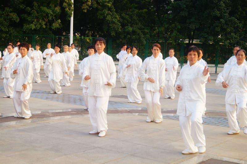 Τα κινέζικα αποσύρθηκαν την ηλικιωμένη συλλογική εκτέλεση Taijiquan στοκ εικόνα