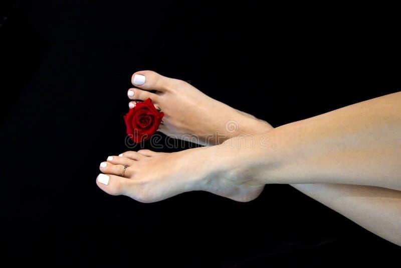 Τα κομψά και ομαλά πόδια γυναικών που διασχίστηκαν με όμορφο κόκκινο αυξήθηκαν μεταξύ του άσπρου κοσμήματος toe και toe καρφιών,  στοκ φωτογραφία με δικαίωμα ελεύθερης χρήσης