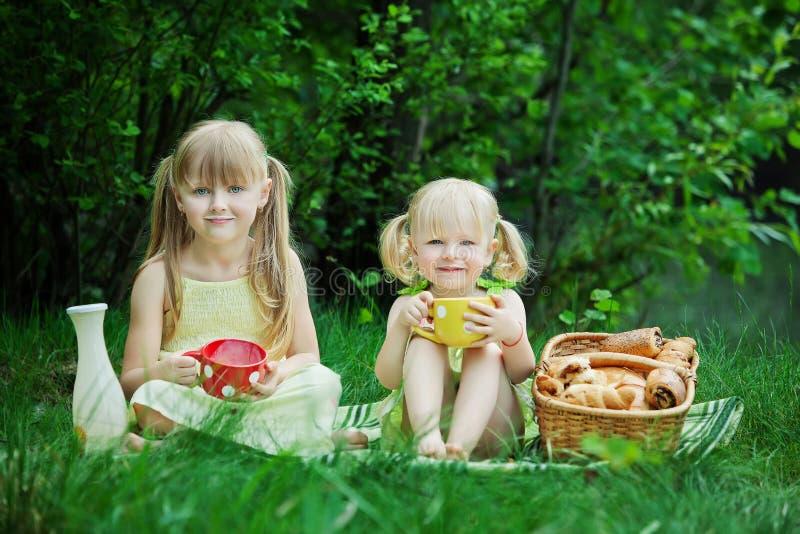 Τα κορίτσια έχουν το πικ-νίκ στοκ εικόνα με δικαίωμα ελεύθερης χρήσης
