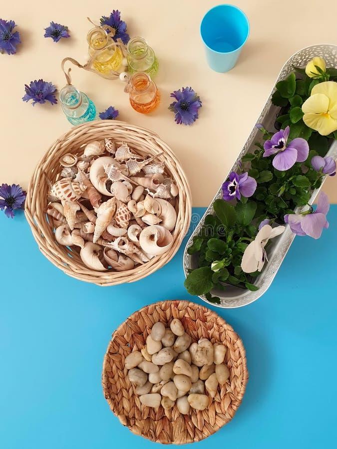 Τα κοχύλια πετρών θάλασσας ανθίζουν το στεφάνι, γιρλάντα, κορώνα, γιρλάντα, στέμμα, ο κυκλίσκος των λουλουδιών χτυπά την μπλε περ στοκ φωτογραφία
