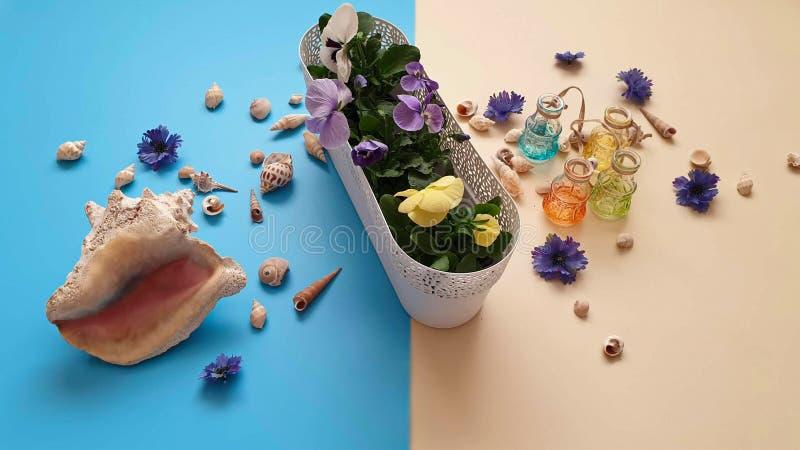 Τα κοχύλια πετρών θάλασσας ανθίζουν το στεφάνι, γιρλάντα, κορώνα, γιρλάντα, στέμμα, ο κυκλίσκος των λουλουδιών χτυπά την μπλε περ στοκ εικόνα