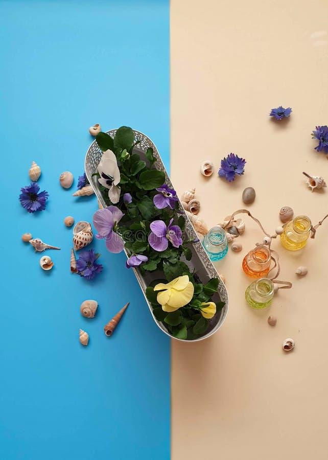 Τα κοχύλια πετρών θάλασσας ανθίζουν το στεφάνι, γιρλάντα, κορώνα, γιρλάντα, στέμμα, ο κυκλίσκος των λουλουδιών χτυπά την μπλε περ στοκ φωτογραφίες