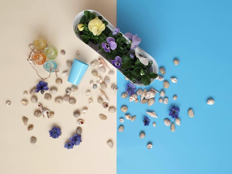 Τα κοχύλια πετρών θάλασσας ανθίζουν το στεφάνι, γιρλάντα, κορώνα, γιρλάντα, στέμμα, ο κυκλίσκος των λουλουδιών χτυπά το μπλε αφηρ στοκ εικόνα