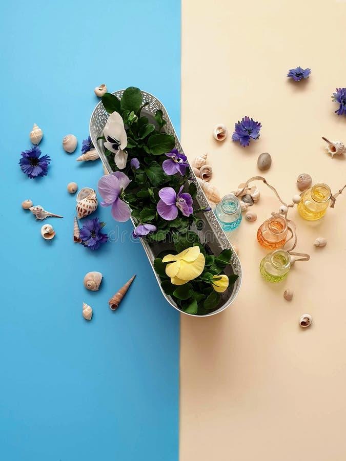 Τα κοχύλια πετρών θάλασσας ανθίζουν το στεφάνι, γιρλάντα, κορώνα, γιρλάντα, στέμμα, ο κυκλίσκος των λουλουδιών χτυπά το μπλε αφηρ στοκ φωτογραφίες