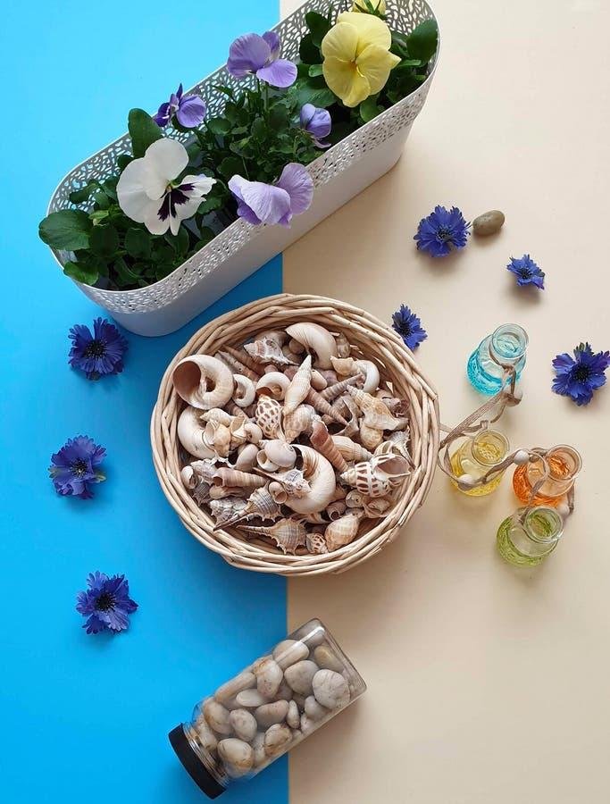 Τα κοχύλια πετρών θάλασσας ανθίζουν το στεφάνι, γιρλάντα, κορώνα, γιρλάντα, στέμμα, ο κυκλίσκος των λουλουδιών χτυπά το μπλε αφηρ στοκ εικόνες