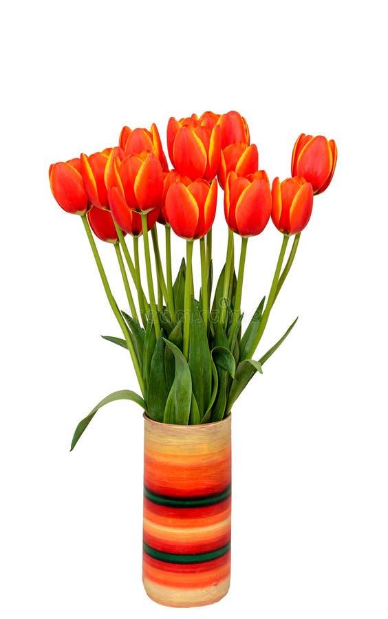 Τα κόκκινα λουλούδια τουλιπών με τα κίτρινα περιθώρια στο χρωματισμένο βάζο, κλείνουν επάνω στοκ εικόνες με δικαίωμα ελεύθερης χρήσης