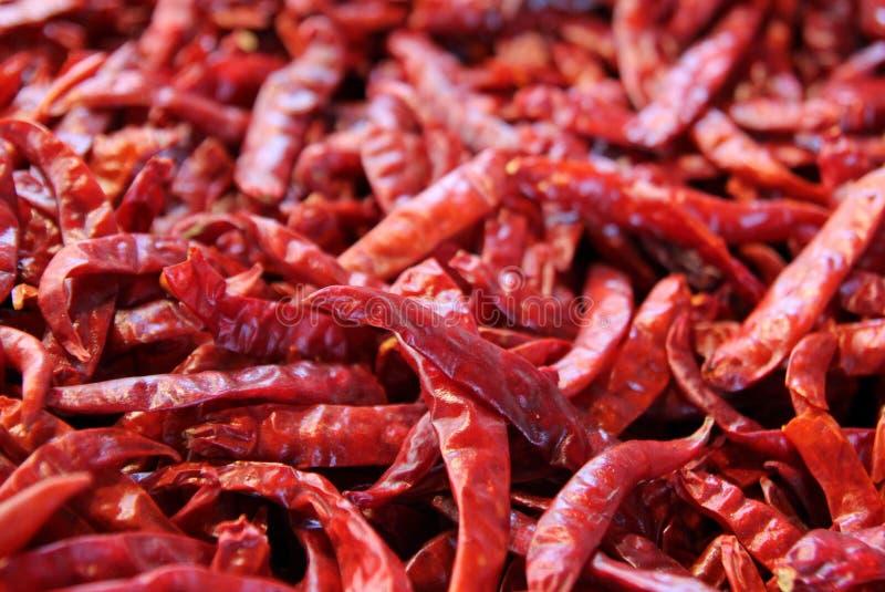Τα κόκκινα πιπέρια τσίλι στην αγορά στοκ εικόνες με δικαίωμα ελεύθερης χρήσης