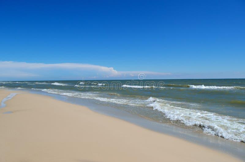 Τα κύματα θάλασσας πλένουν την καθαρή αμμώδη παραλία Τοπίο σε μια άγρια παραλία στοκ εικόνα με δικαίωμα ελεύθερης χρήσης