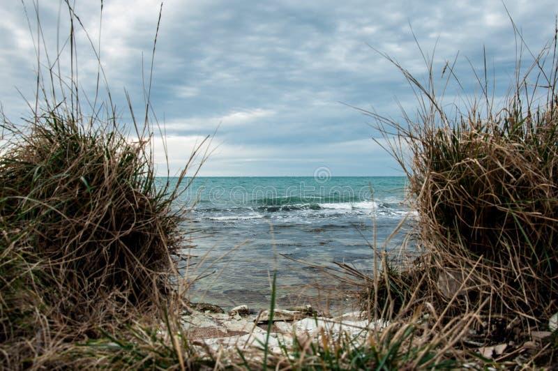 Τα κύματα της θάλασσας στοκ εικόνες