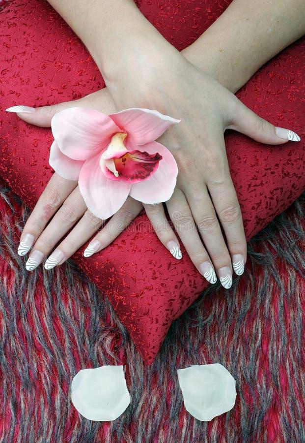 τα λουλούδια δίνουν morte τη γυναίκα φύσης s στοκ εικόνες