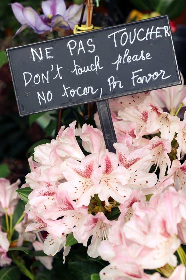 Τα λουλούδια καταστημάτων ανθοκόμων δεν αγγίζουν το σημάδι στοκ εικόνες