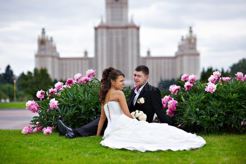 τα λουλούδια νυφών καλ&lambd στοκ φωτογραφίες