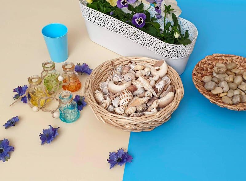 Τα λουλούδια Pansies πέτρες μιας στις εποχιακές λουλουδιών ζαρντινιερών δοχείων λουλουδιών κοχυλιών θάλασσας ποτίζουν τη θερινή π στοκ φωτογραφίες με δικαίωμα ελεύθερης χρήσης