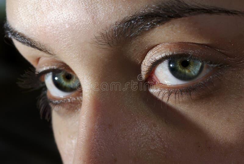 τα μάτια έχουν στοκ εικόνες