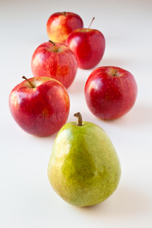 τα μήλα ακολουθούν το αχλάδι ηγετών στοκ εικόνα