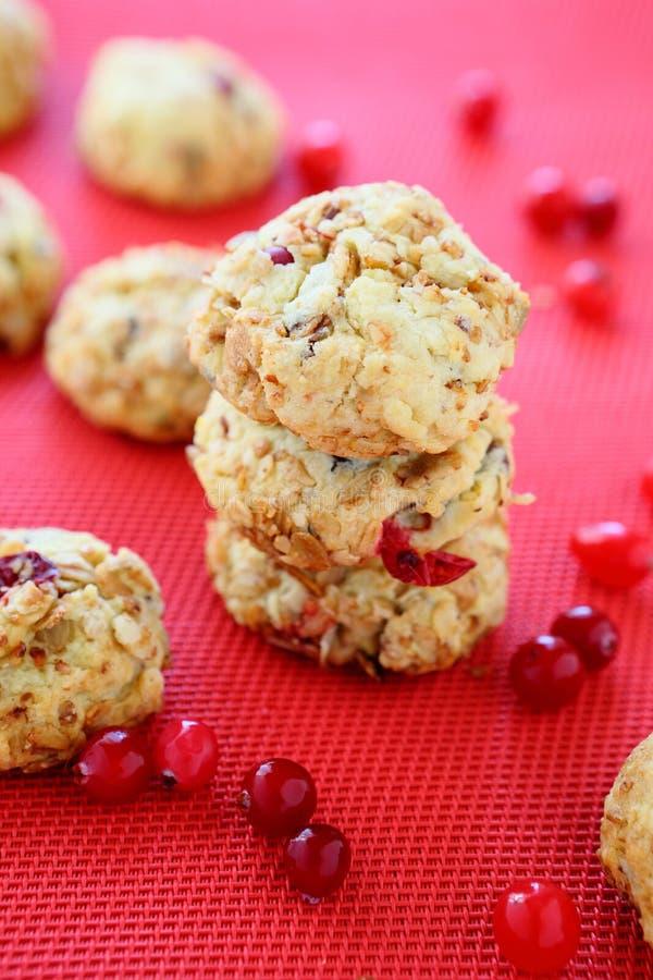 Τα μίνι μπισκότα με τα τα βακκίνια, χειμώνας μεταχειρίζονται στοκ εικόνα με δικαίωμα ελεύθερης χρήσης