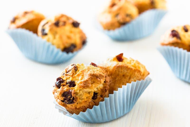 Τα μίνι-muffins των βακκίνιων σε ένα έγγραφο φορμάρουν στοκ φωτογραφίες