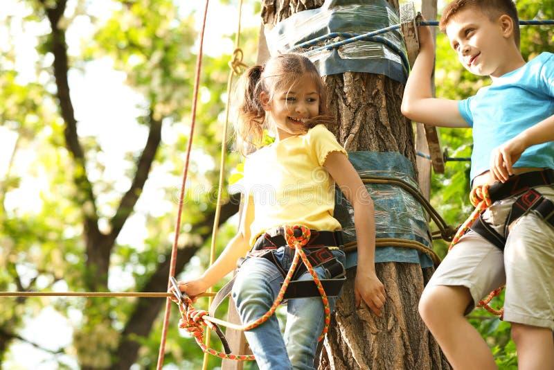 Τα μικρά παιδιά που αναρριχούνται στην περιπέτεια σταθμεύουν στοκ εικόνες με δικαίωμα ελεύθερης χρήσης
