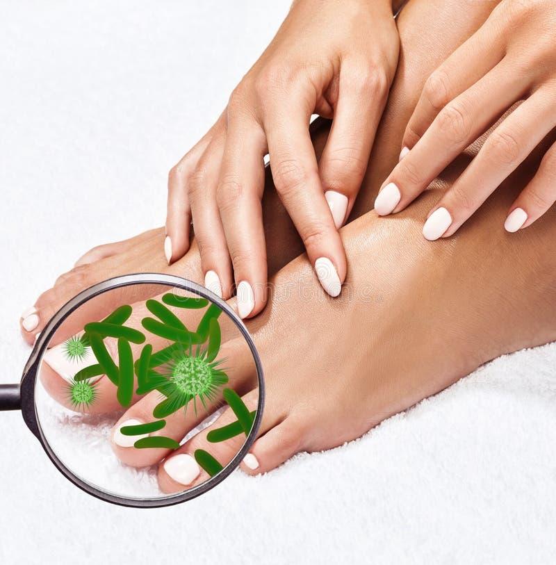 Τα μικρόβια στα θηλυκά πόδια παρουσιάζουν με το γυαλί στοκ φωτογραφία με δικαίωμα ελεύθερης χρήσης