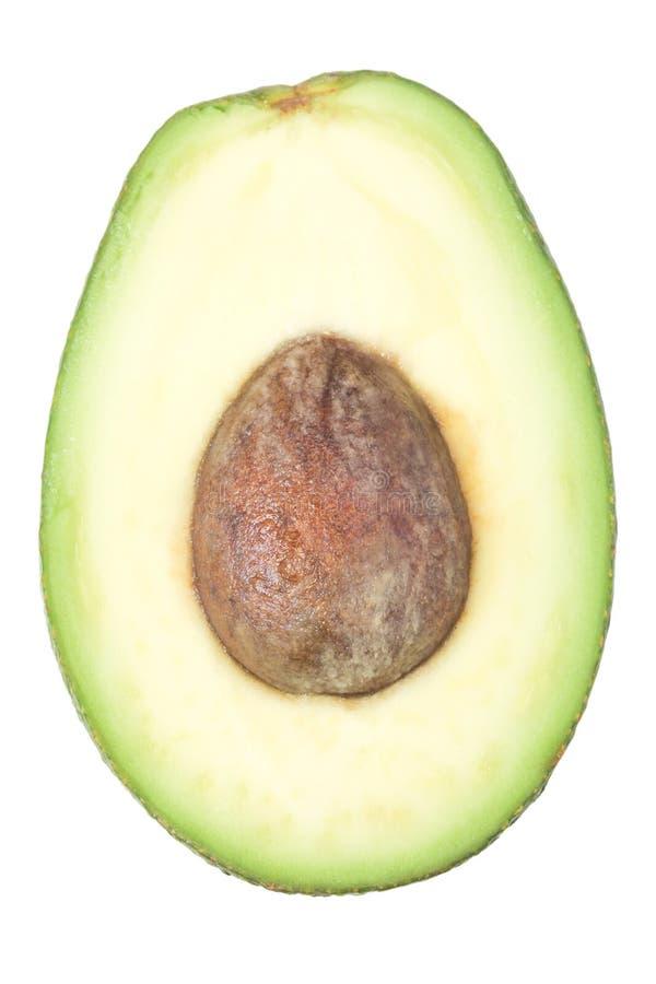 Τα μισά από τα φρούτα αβοκάντο με το σπόρο στοκ φωτογραφία με δικαίωμα ελεύθερης χρήσης
