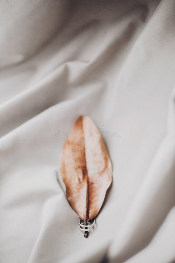 Τα μοντέρνα ασημένια γαμήλια δαχτυλίδια στο καφετί φύλλο φθινοπώρου στο μαλακό Tulle το πρωί ανάβουν στο δωμάτιο ξενοδοχείου r στοκ εικόνα
