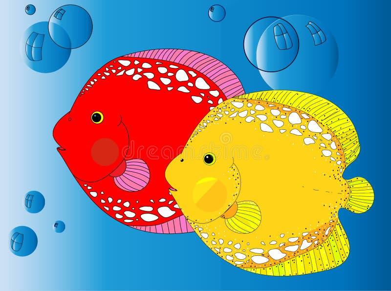 Τα μπλε ψάρια θάλασσας απεικόνιση αποθεμάτων