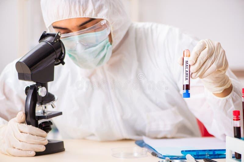 Τα νέα όμορφα δείγματα αίματος δοκιμής εργαστηρίων βοηθητικά στο νοσοκομείο στοκ εικόνα