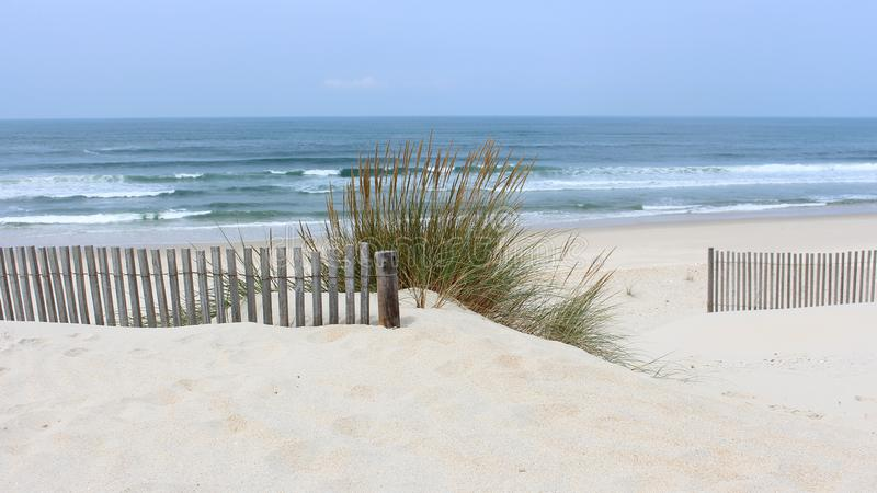 Τα ξημερώματα στην παραλία Vagueira με τις βρώμες θάλασσας και ο αμμόλοφος περιφράζουν μέσα το Αβέιρο, Πορτογαλία στοκ φωτογραφίες
