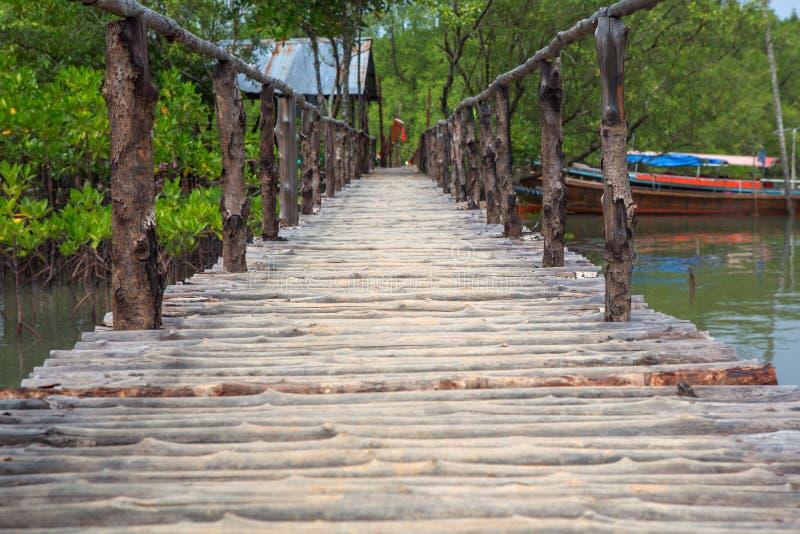 Τα ξύλινα δάση μαγγροβίων διάβασης πεζών γεφυρών στην Ταϊλάνδη στοκ εικόνες με δικαίωμα ελεύθερης χρήσης