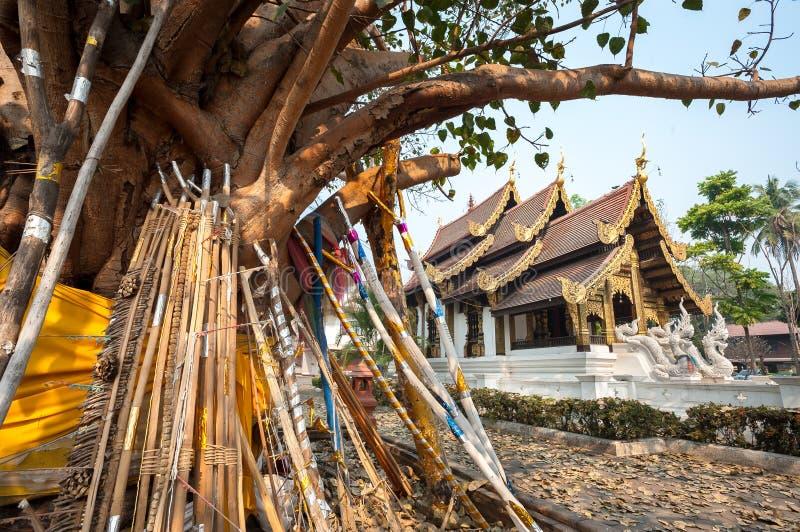 Τα ξύλινα στηρίγματα υποστηρίζουν ένα παλαιό δέντρο bodhi στους λόγους Wat Jed Yod, Chiang Mai, Ταϊλάνδη στοκ εικόνες