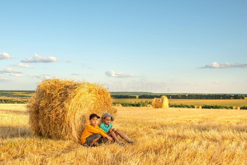 Τα παιδιά κάθονται σε μια θυμωνιά χόρτου σε έναν τομέα μια ηλιόλουστη ημέρα και επικοινωνούν στοκ εικόνες με δικαίωμα ελεύθερης χρήσης