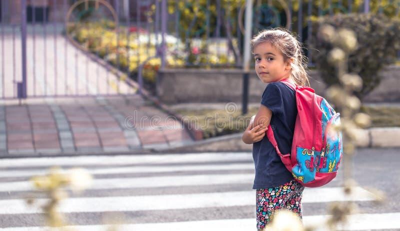 Τα παιδιά πηγαίνουν στο σχολείο, ένας ευτυχής σπουδαστής με ένα σακίδιο πλάτης, σταυροί στοκ εικόνες