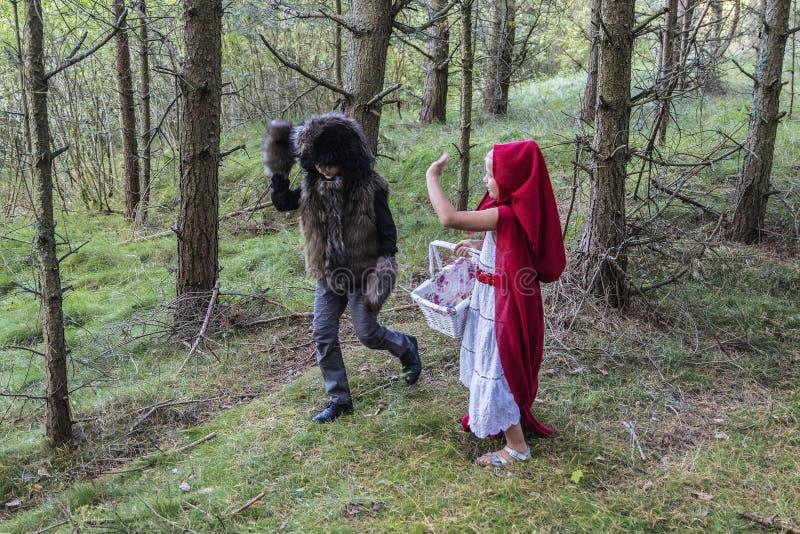 Τα παιδιά στο δάσος στοκ εικόνες